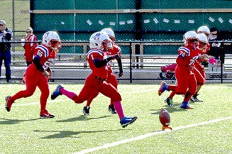 Mattapan_Patriots_Pop_Warner9-10115-web